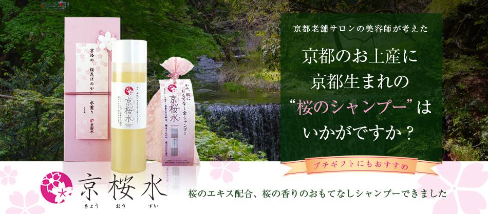 桜の季節の贈り物に